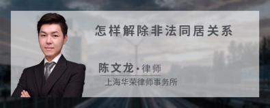 怎样解除非法同居关系-陈文龙律师