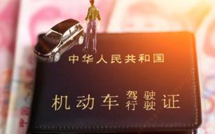 考駕照流程