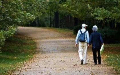 2020年退休金上调多少