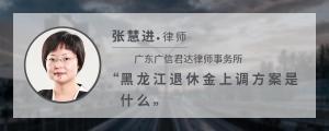黑龙江退休金上调方案是什么