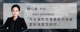 河北省的交通事故伤残鉴定标准是怎样的