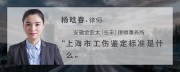 上海市工伤鉴定标准是什么