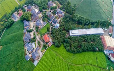 关于集体土地作为建设用地的法律适用的法律规定