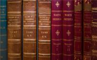 关于凭样品买卖合同样品存在隐蔽瑕疵的处理的规定买卖合同纠纷如何提起诉讼