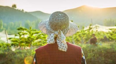 农村承包经营户享有哪些权利