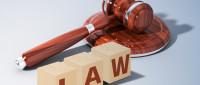 出租人怠于行使索赔权时承租人可以请求其承担责任吗