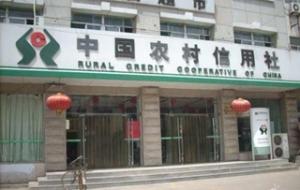 农村信用社贷款利息