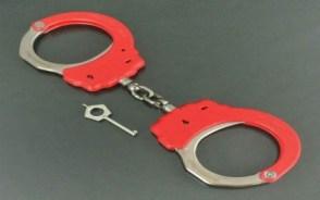 单位合同诈骗罪量刑标准