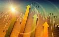 有限责任公司可以发行股票吗