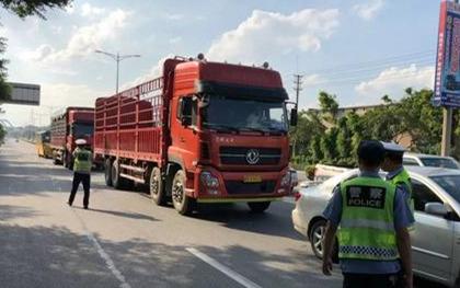 外地车在杭州怎么限行