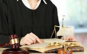 诉讼辩护人有什么权利?十一大主要权利