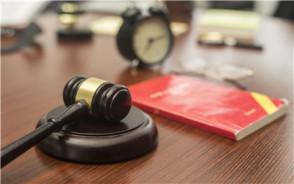 不服法院生效裁判可以申诉再审吗