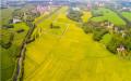农村房屋征地补偿标准是多少?土地征收法定程序是什么?