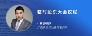 临时股东大会议程
