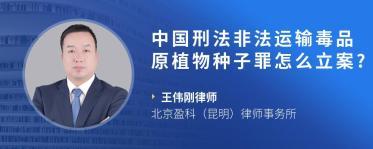 中国刑法非法运输毒品原植物种子罪怎么立案?